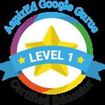 google_level1
